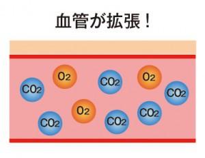 炭酸と肌説明4